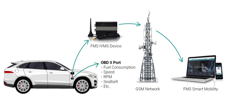 Fuel Management Solution Light Vehicles obdii port